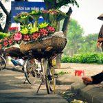 hanoi-12-flower-season